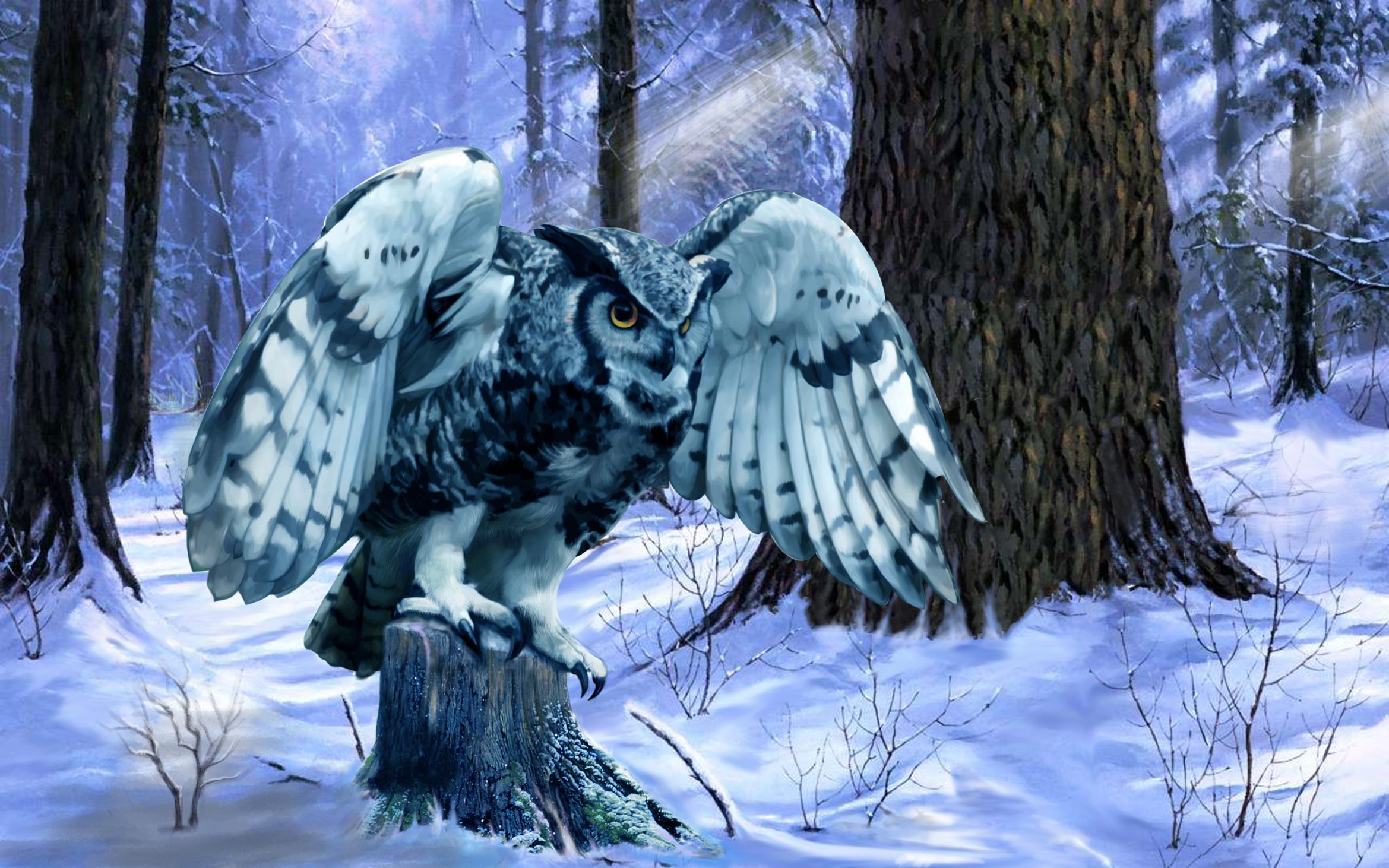 心情是激動的,想看見雪;心口是冰涼的,又老了一歲。